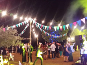 carpa luces banderines boda fiesta